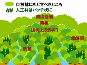 s-ゾーニング(杉)