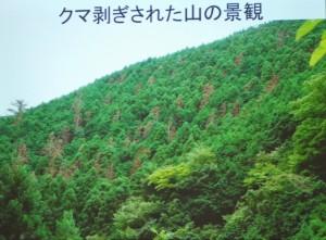 s-DSC_0097
